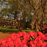 main campus building with flowers outside of it